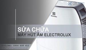 Sửa máy hút ẩm Electrolux tại Hà Nội | Giá tốt, TIẾT KIỆM 10%