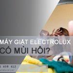 Xử lý máy giặt Electrolux có mùi hôi chỉ trong 1 NỐT NHẠC